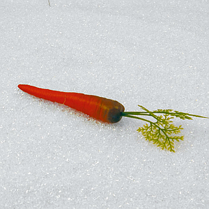CARROT WITH LEAF